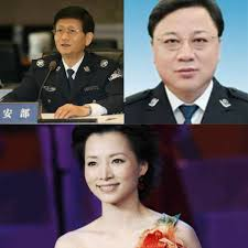 "Sun Lijun, the ""hatchet man"" of Wang Qishan and Meng Jianzhu, was arrested!"