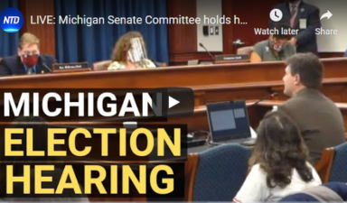 LIVE: Michigan Senate Hearing on Election Issues 12/1