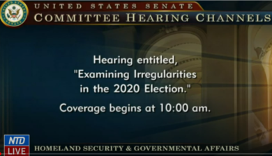 LIVE:US Senate Hearing Election Fraud 12/16