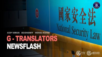 04/29/2021  G-Translators Newsflash